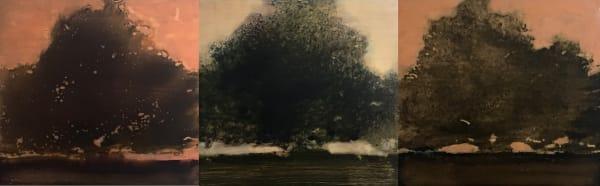 David Konigsberg, Arboreal #1, #2, #3 (triptych), 2018