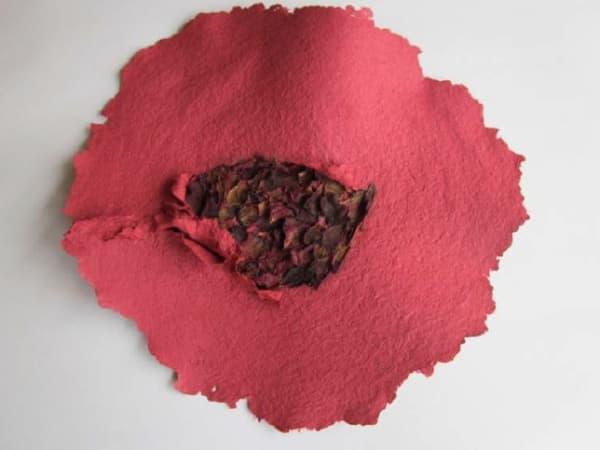 Lili DUJOURIE 1941 - Ballade - Rosa Canina, 2011 Paper mache Unique 38 x 36 x 3.5 cm