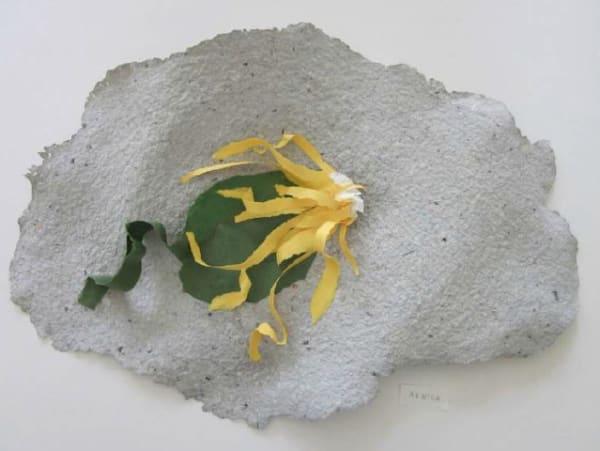 Lili DUJOURIE 1941 - Ballade - Arnica, 2011 Paper mache Unique 33 x 51 x 6.5 cm
