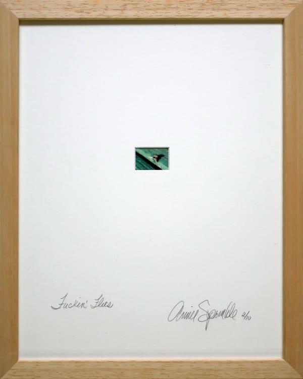 Annie SPRINKLE, Fucking flies, 1999
