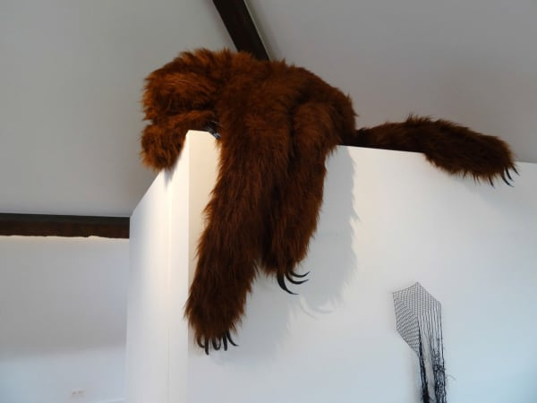 Elodie ANTOINE, Paresseux griffu grand brun (Sloth), 2015