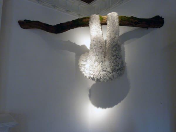 Elodie ANTOINE, Paresseux gris clair (Sloth), 2014
