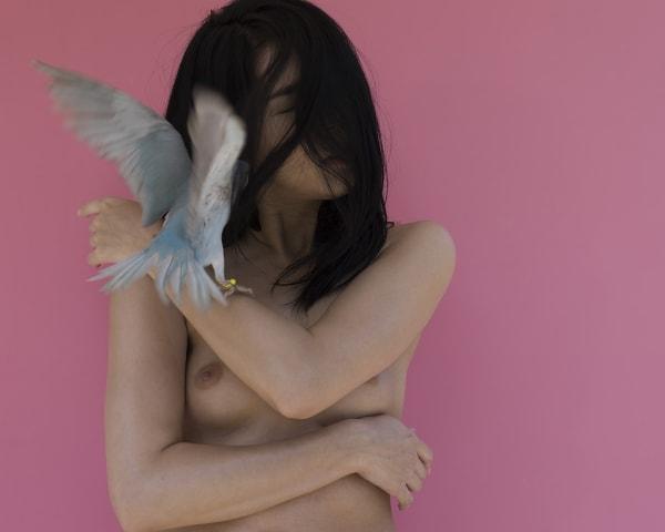 Sylvie Blum, Blue Indian Ringneck Parakeet, 2019