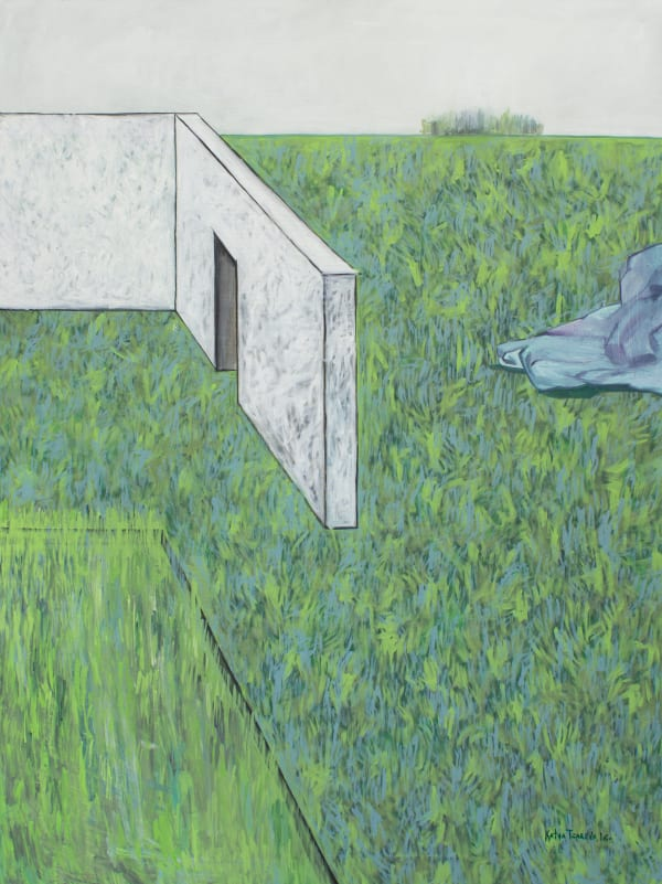 История одного белого дома