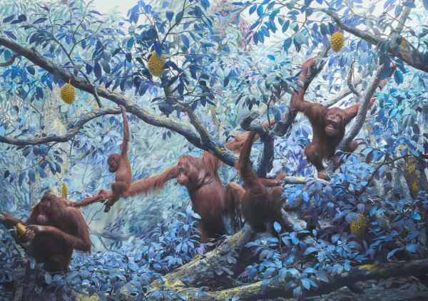 Jim Naughten, Orangutans, 2021