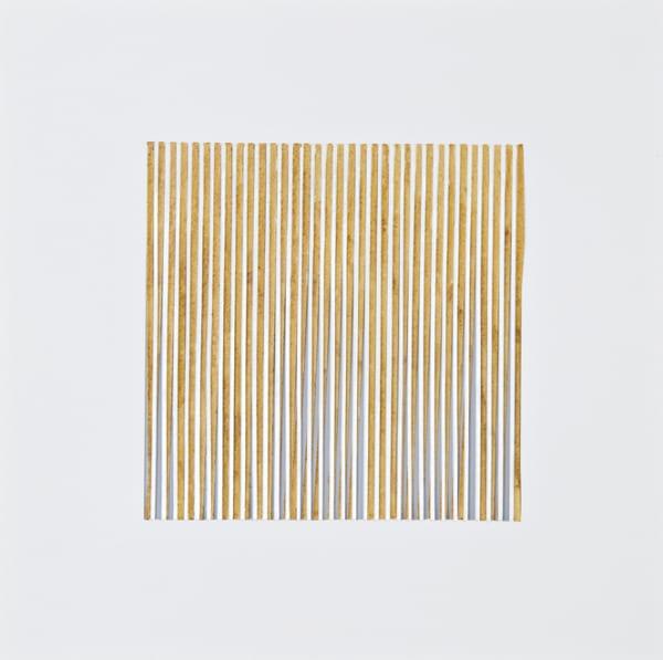 Viviane Rombaldi Seppey, Light 46, 2009