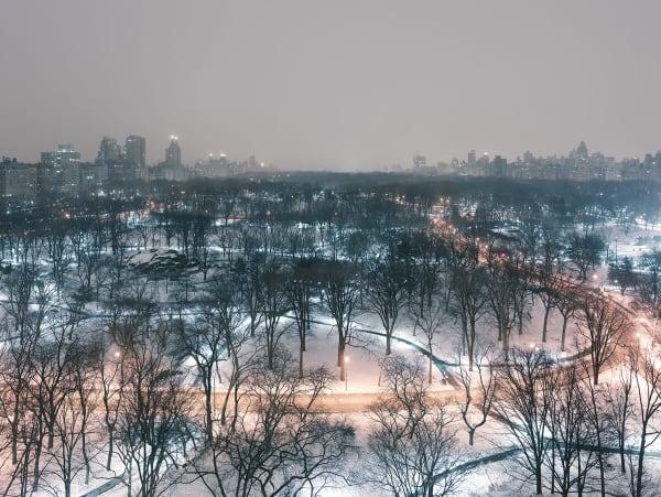 Josef Hoflehner, Central Park Winter Night, 2014