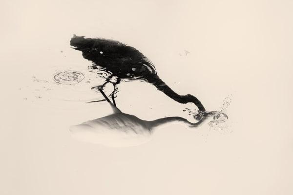 M.o.K. - Early Work