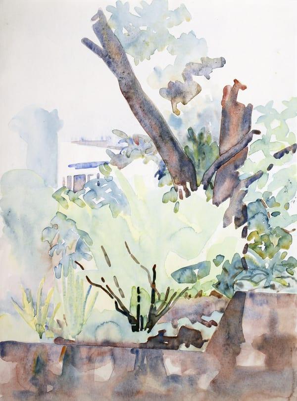 Rita Angus, Tree Study, Thorndon, n.d.