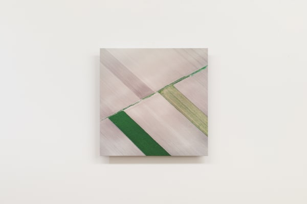 Elizabeth THOMSON, Field Study II - Abstract Geometric, 2021
