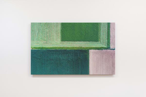 Elizabeth THOMSON, Colour Field II, 2020