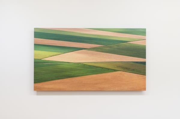 Elizabeth THOMSON, Fieldwork, 2021