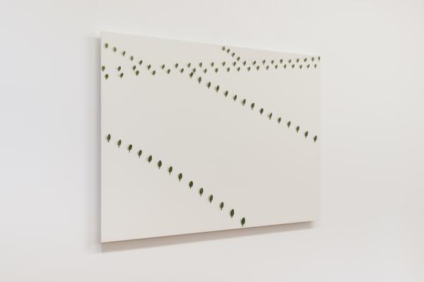 Elizabeth THOMSON, Thousand Acre Study IV, 2004