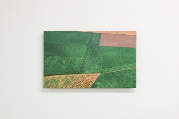 Elizabeth THOMSON, Field Study - arable land, 2021