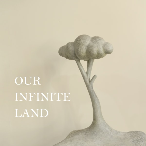 Our Infinite Land