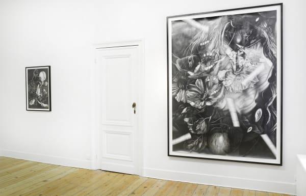 """Dennis Scholl - Les non-dupes errent' Installation view at Aeroplastics, 2013"