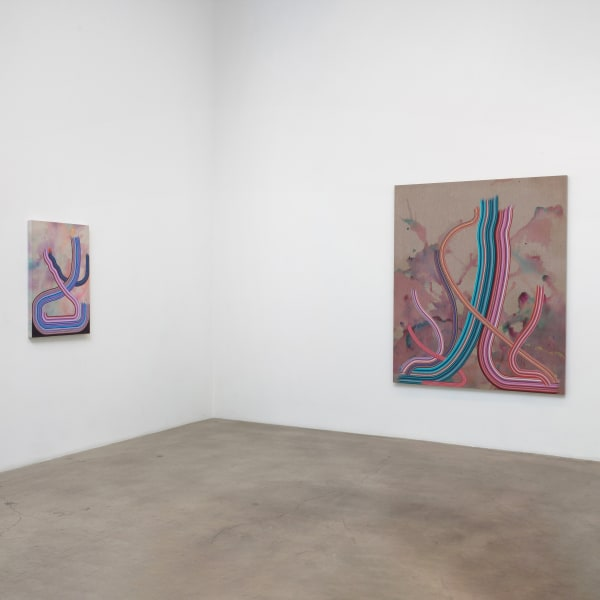 Dani Tull: Take a single letter from the stream, Diane Rosenstein Gallery
