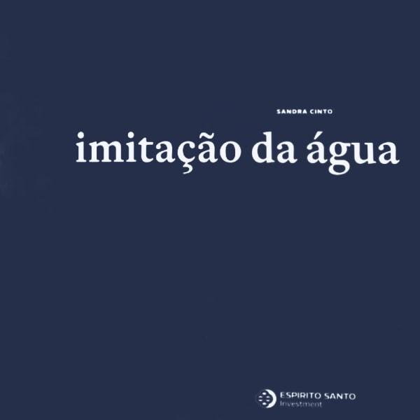 Sandra Cinto: Imitação da Água