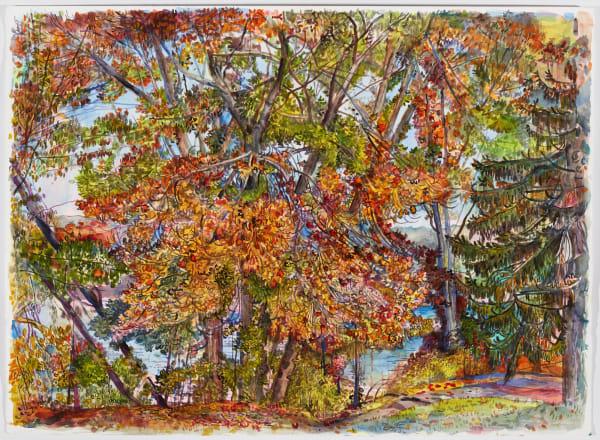 Nancy Friese, Fall Realm