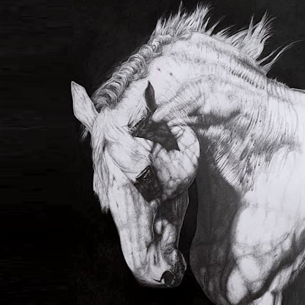 """<span class=""""artist""""><strong>Eleanor-Rose Stamp</strong></span>, <span class=""""title""""><em>White Horse</em>, 2021</span>"""