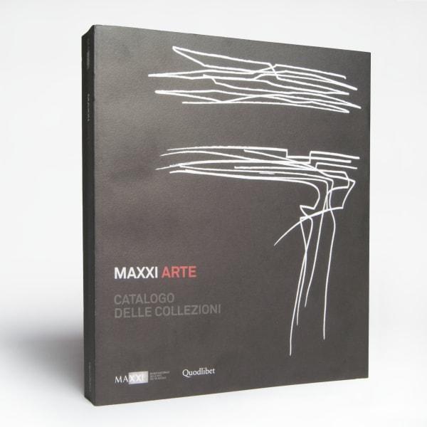 MAXXI Arte Catalogo delle Collezioni