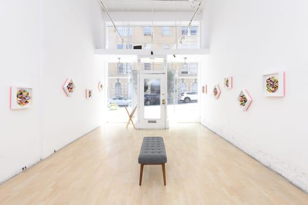 "Installation: ""The Garden"" Sean Newport"