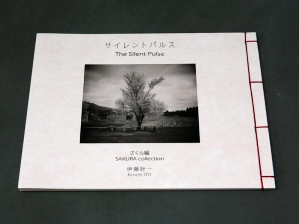 The Silent Pulse - Keiichi Ito
