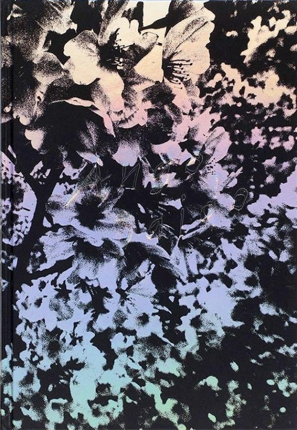 Ango - Daido Moriyama
