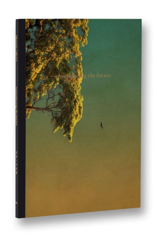 Remembering the future (second reprint) - Albarrán Cabrera