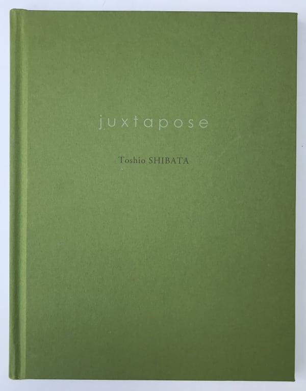 Juxtapose - Toshio Shibata