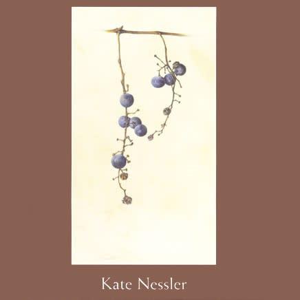 Kate Nessler : Singular Focus