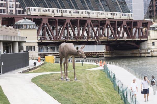 Tony Tasset, Deer, 2017. Fiberglass, epoxy, and paint, 12' H x 20' L x 8' W , Collection of Crystal Bridges