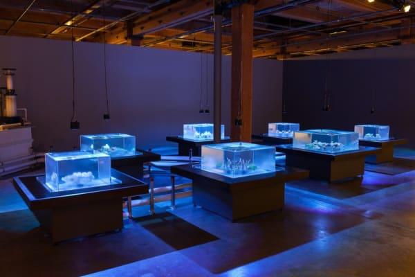 Glenn Kaino, Tank, 2014. Installation view: Prospect.3, New Orleans. Photo courtesy of Joe Rynkiewicz