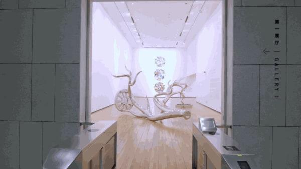 Tomokazu Matsuyama's, Accountable Nature - Exhibition Video