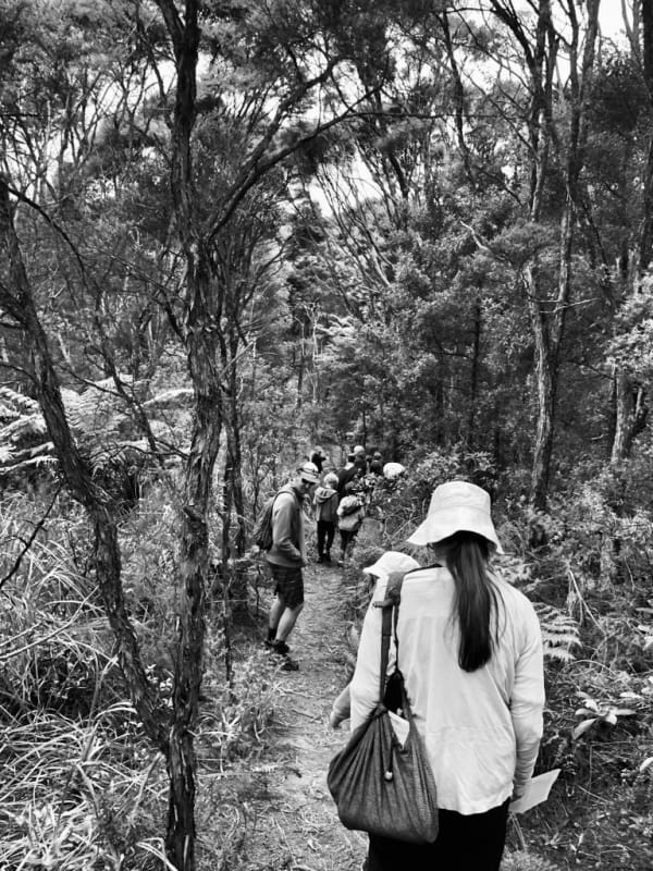 Art of Foraging Walks - June Winter