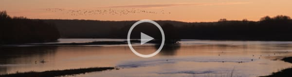 Loire at Chouzy - Ouest : 24 Hour Film