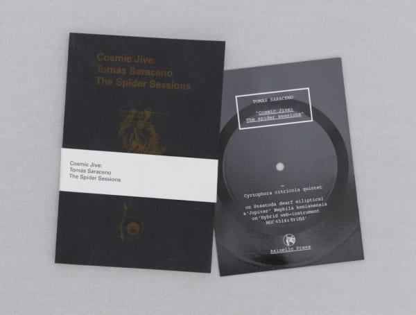 Tomás Saraceno: Arachnid Orchestra – Jam Sessions