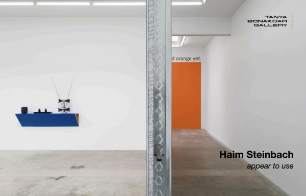 Haim Steinbach: Appear to Use