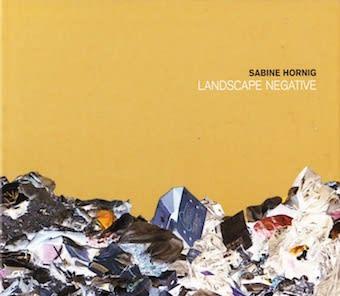 Sabine Hornig: Landscape Negative