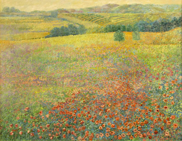 Jance Lentz, Poppies in Tuscany
