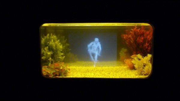 Pierrick SORIN, Aquarium au danseur, 2010