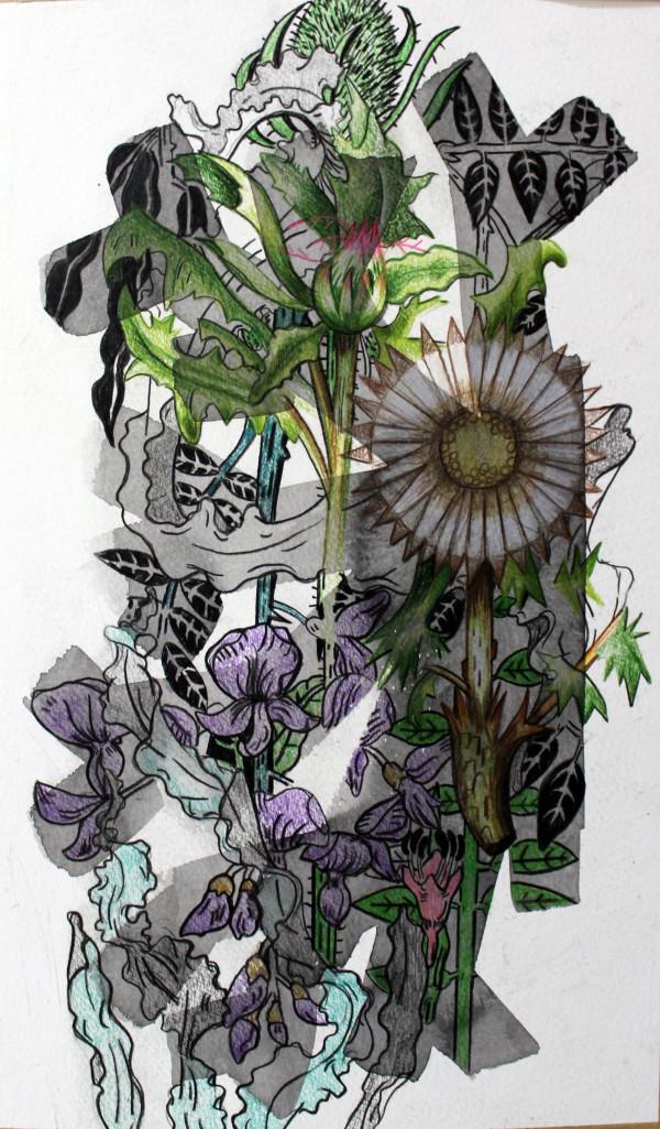 Florentine & Alexandre LAMARCHE-OVIZE, Elisée, un herbier, 2018