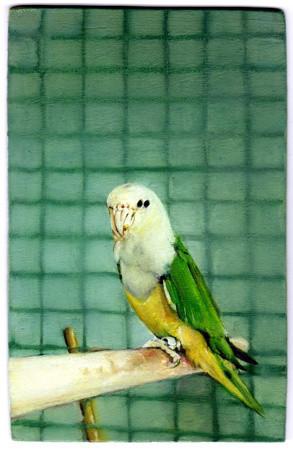 Leopold RABUS, Oiseau n° 23, 2012