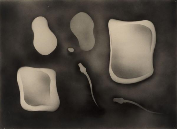 <em>Metamorphic Study</em>, 1933