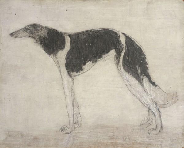 <em>Portrait of Dog Dankoff</em>, c.1973