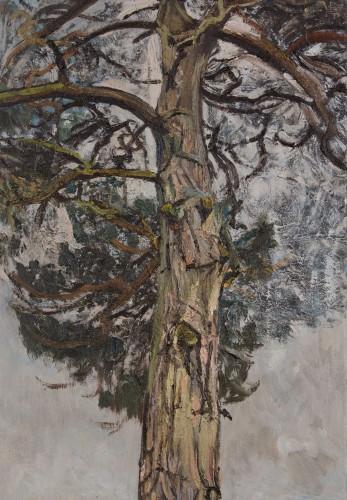 <em>Pine Tree IV</em>, 2008