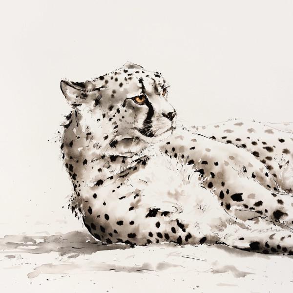 Julia Cassels - Cricket Fine Art London