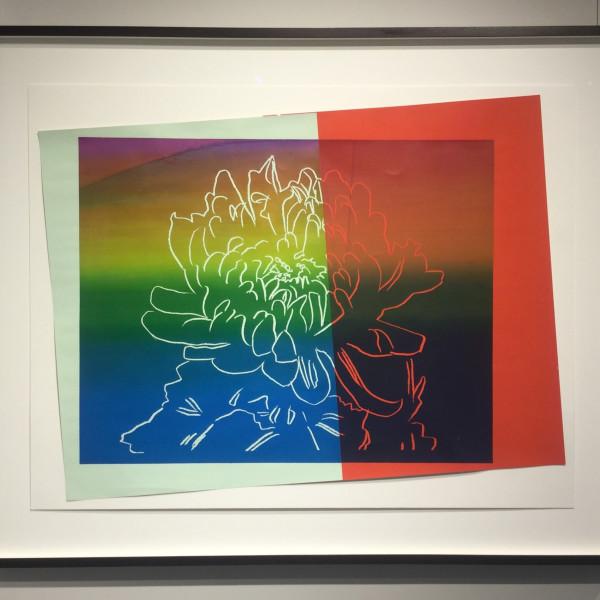 Andy Warhol, Kiku (unique), 1983