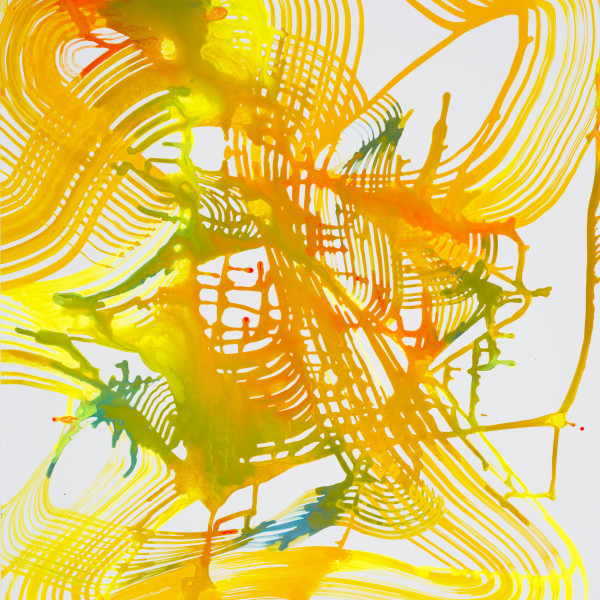 Lorene Anderson - Geoid Undulations, 2018