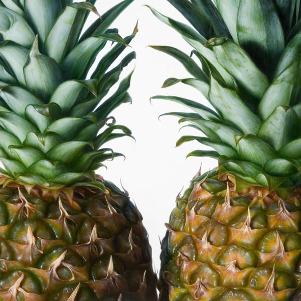 Antonio Castello - Pineapples